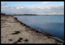 ¿Es Kerteminde la playa de Odense?